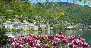 туроператоры Швейцарии