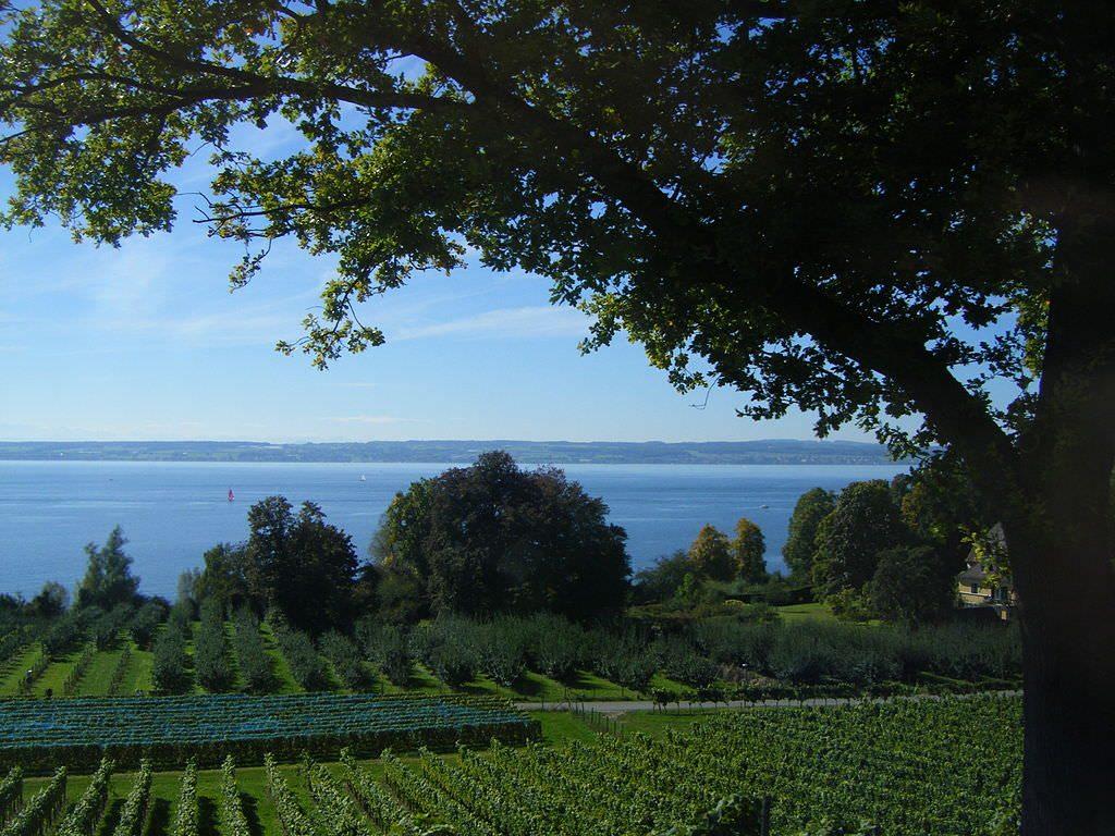 Боденское озеро фото погода Боденское озеро Боденское озеро (озеро Констанц) Lac de constance