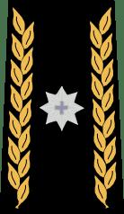 Бригадный генерал армия Швейцарии