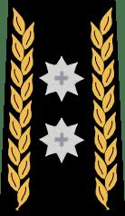 Командир дивизии